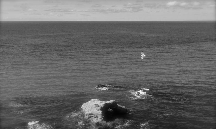 Punta Aderci, maggio 2015