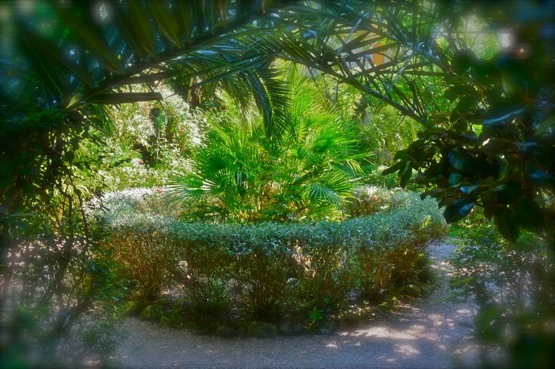 Parco dei Ligustri – Loreto Aprutino, settembre 2015