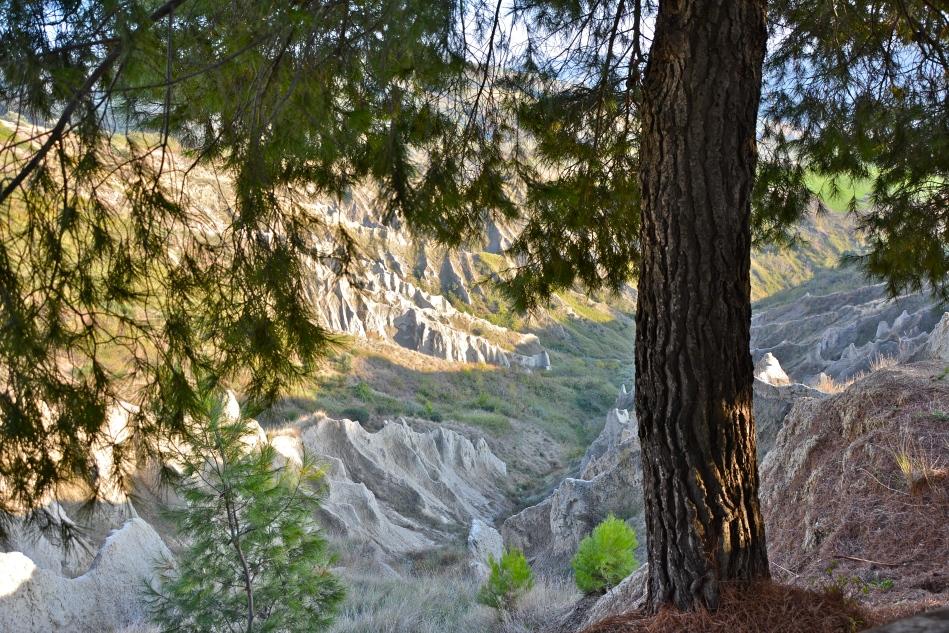 Riserva Naturale dei Calanchi - Atri, novembre 2015