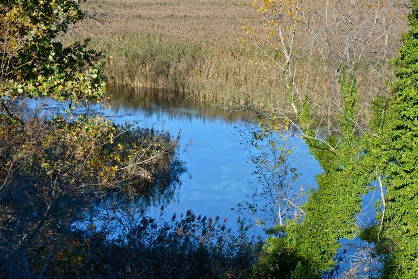 Riserva sorgenti del Pescara – Popoli, novembre 2015